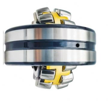 SKF 6201 6202 6203 6303 RS Zz Deep Groove Ball Bearings High Quality Made in China