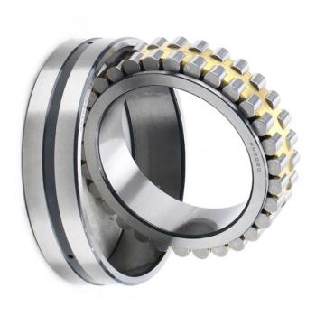Ezo SKF, NSK, NTN, Koyo NACHI China Factory P5 Quality Zz, 2RS, Rz, Open, 608zz 6703 6704 6705 6706 6707 6708 6709 6710 6711 Deep Groove Ball Bearing